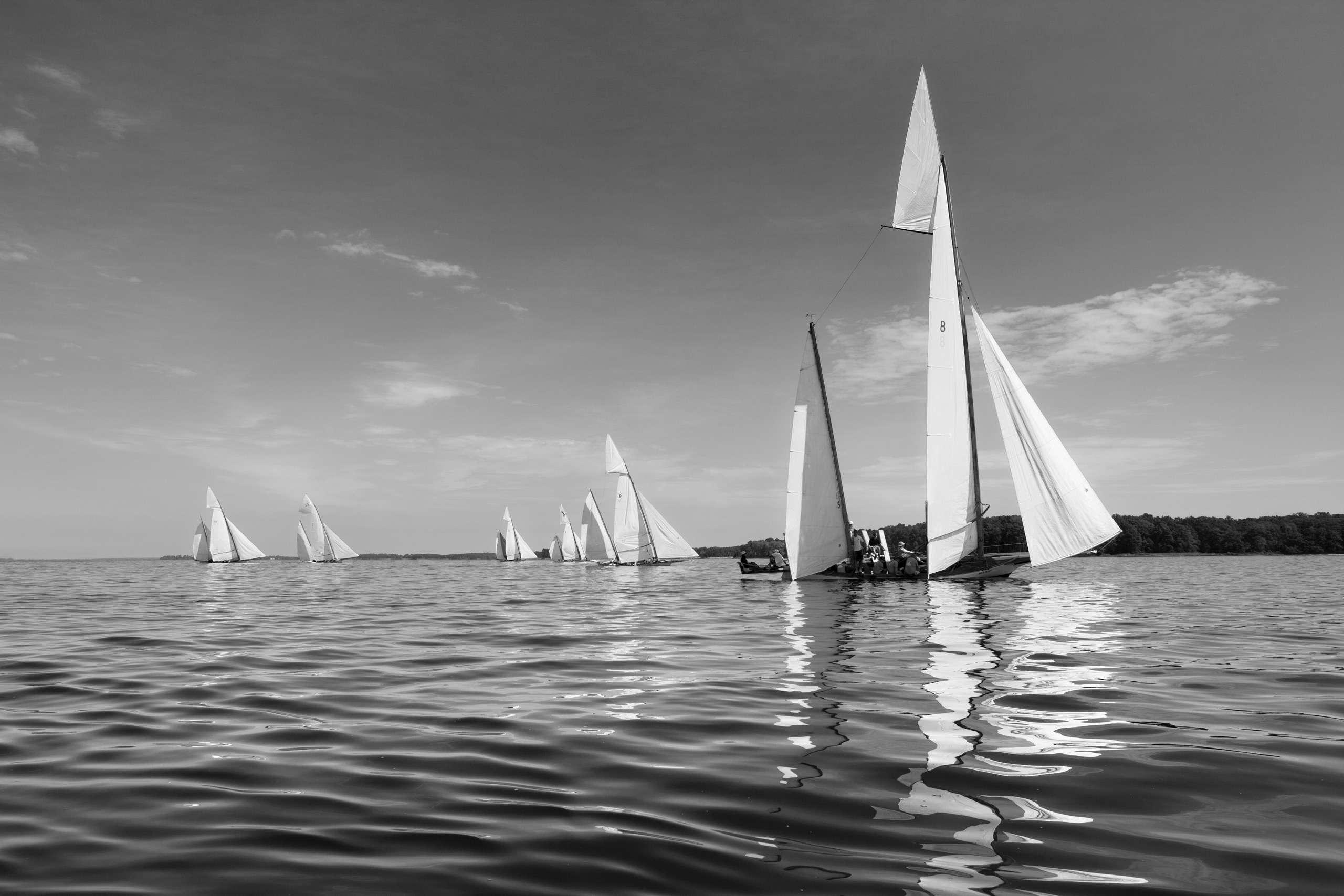 PORTFOLIO - Sailing - Log Canoes #2   PCG566