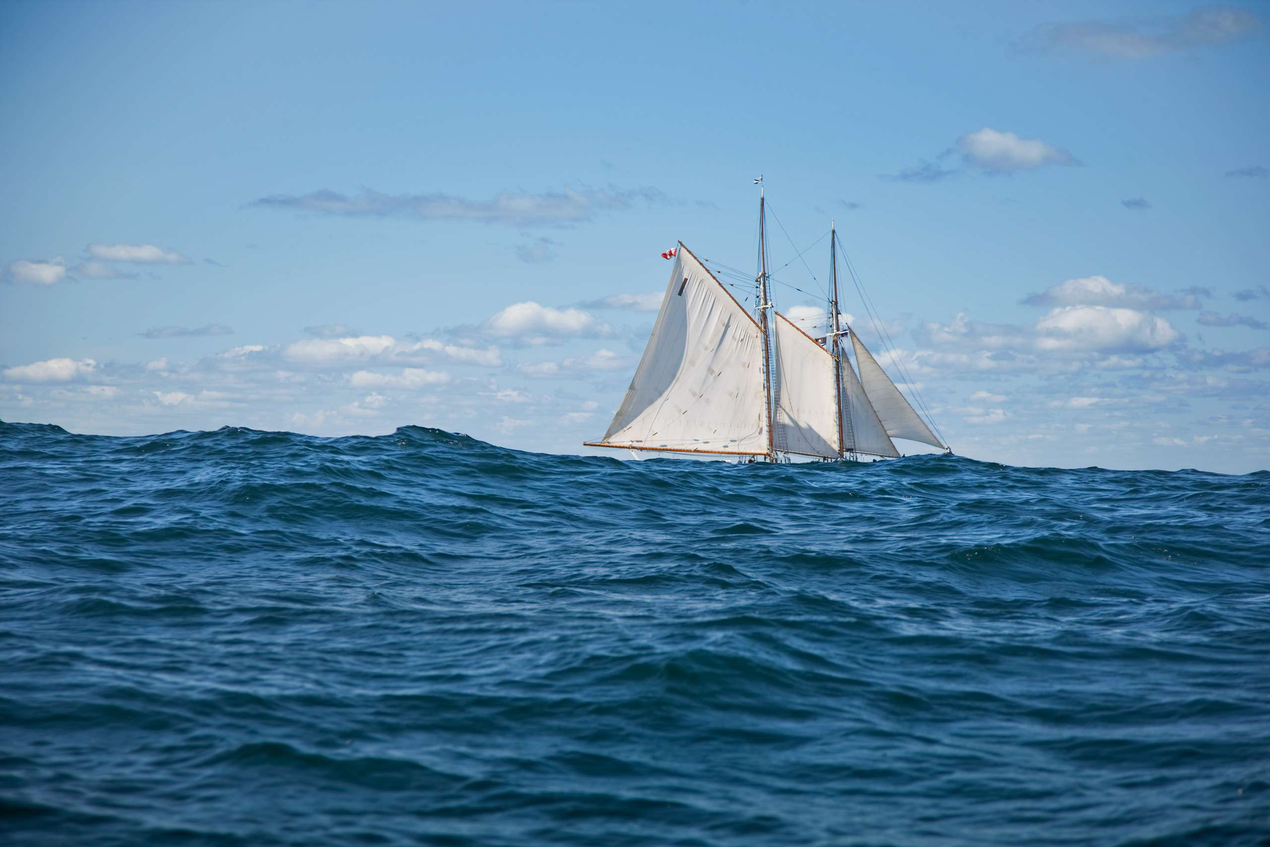 PORTFOLIO - Sailing - Windjammers #10   PCG463