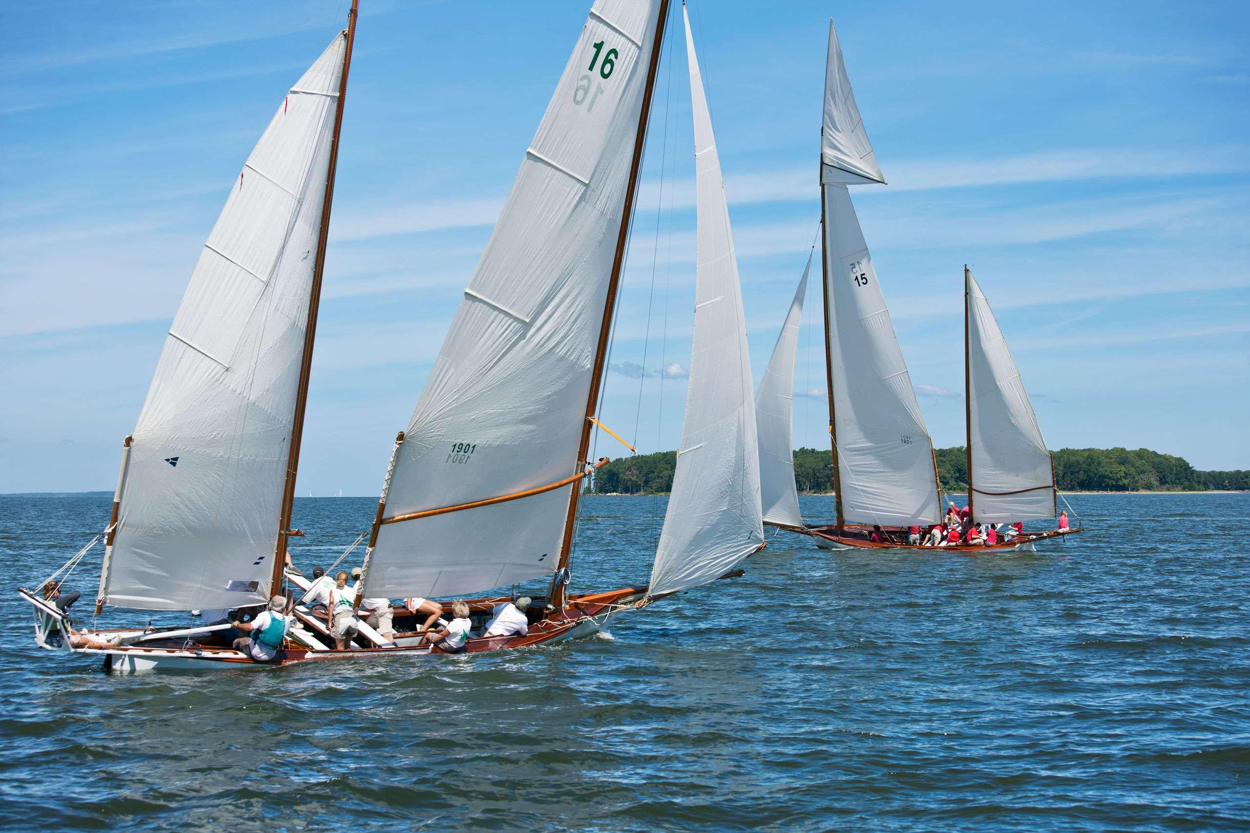 PORTFOLIO - Sailing - Log Canoes #19   PCG579