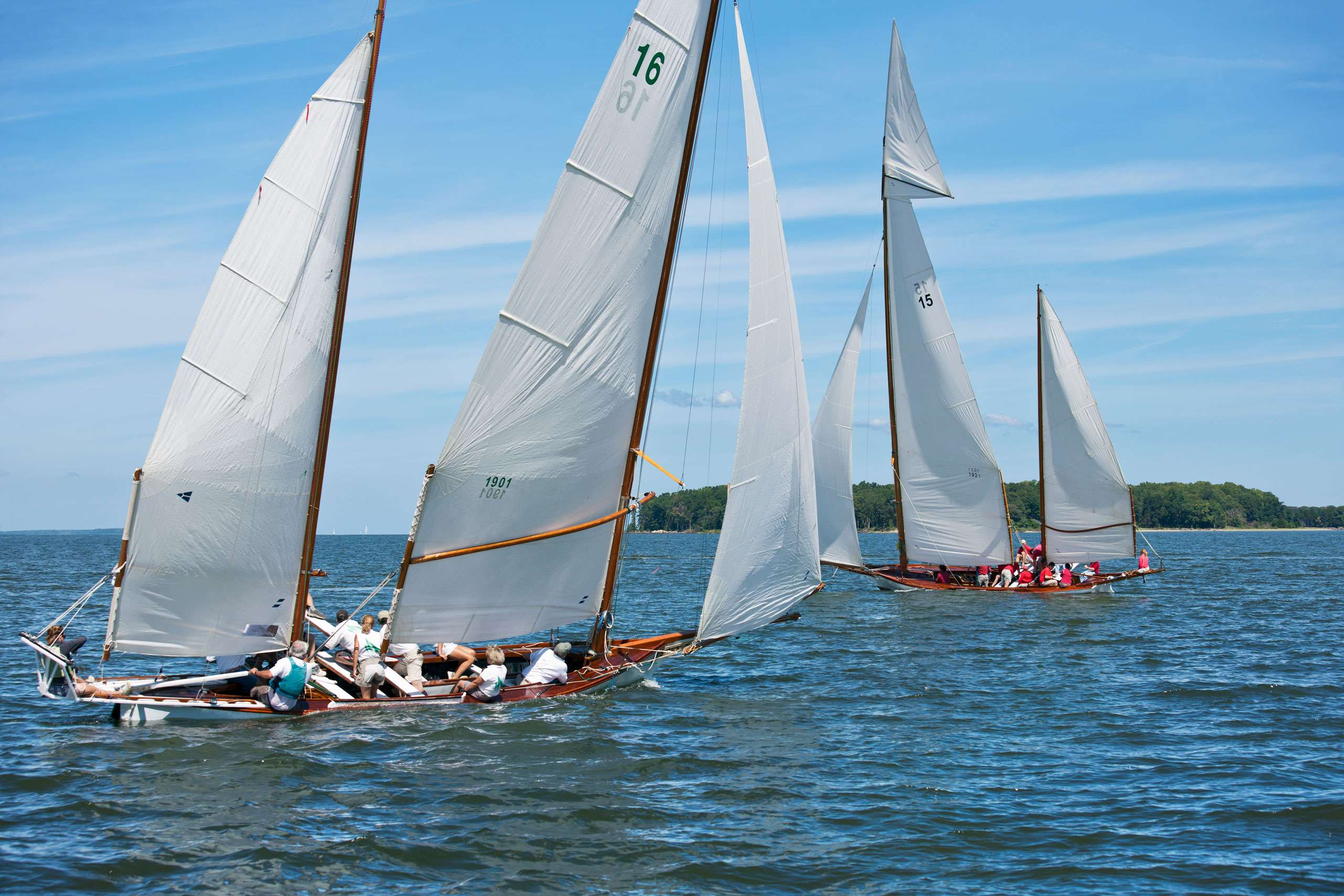 PORTFOLIO - Sailing - Log Canoes #19   PCG579