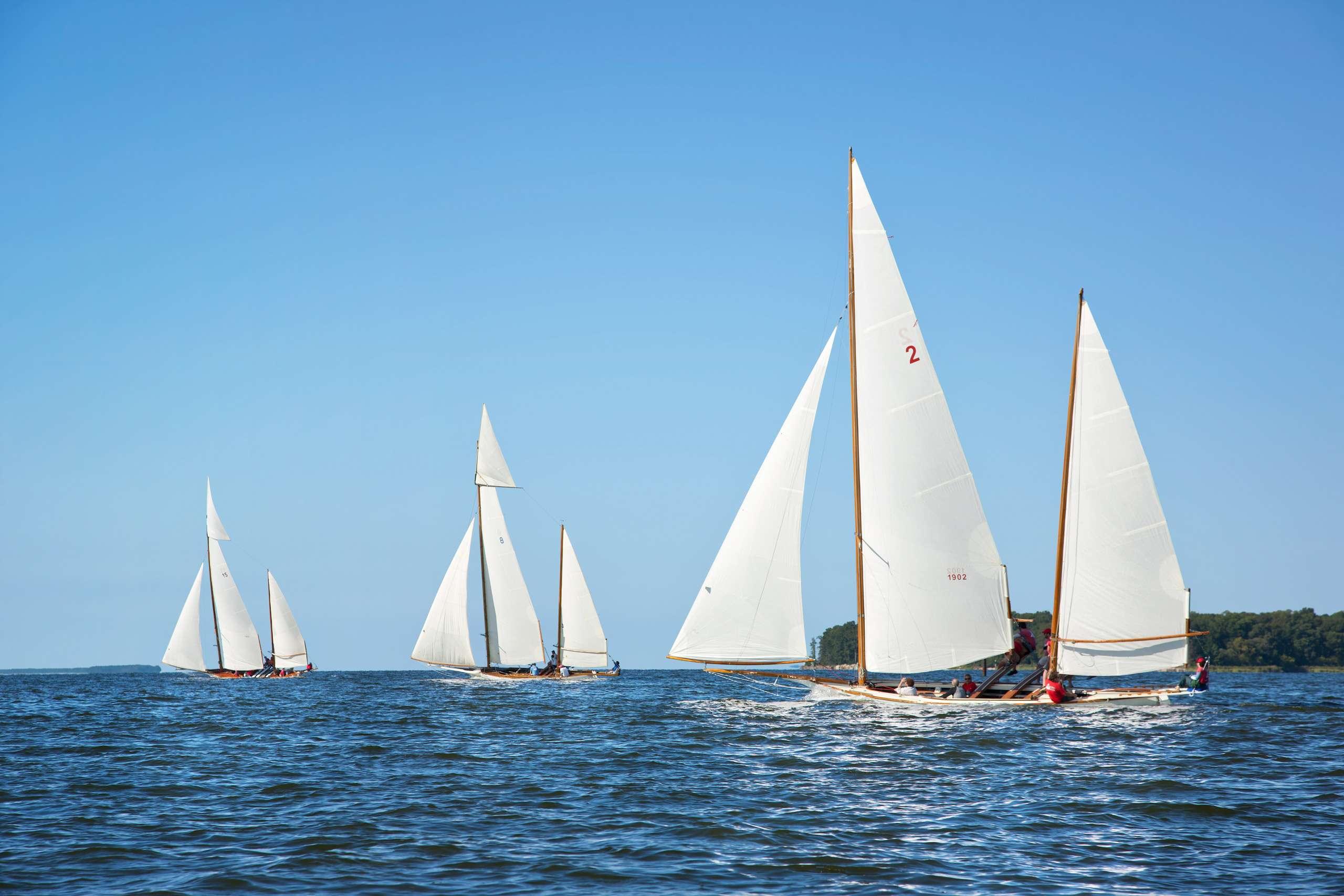 PORTFOLIO - Sailing - Log Canoes #9   PCG559
