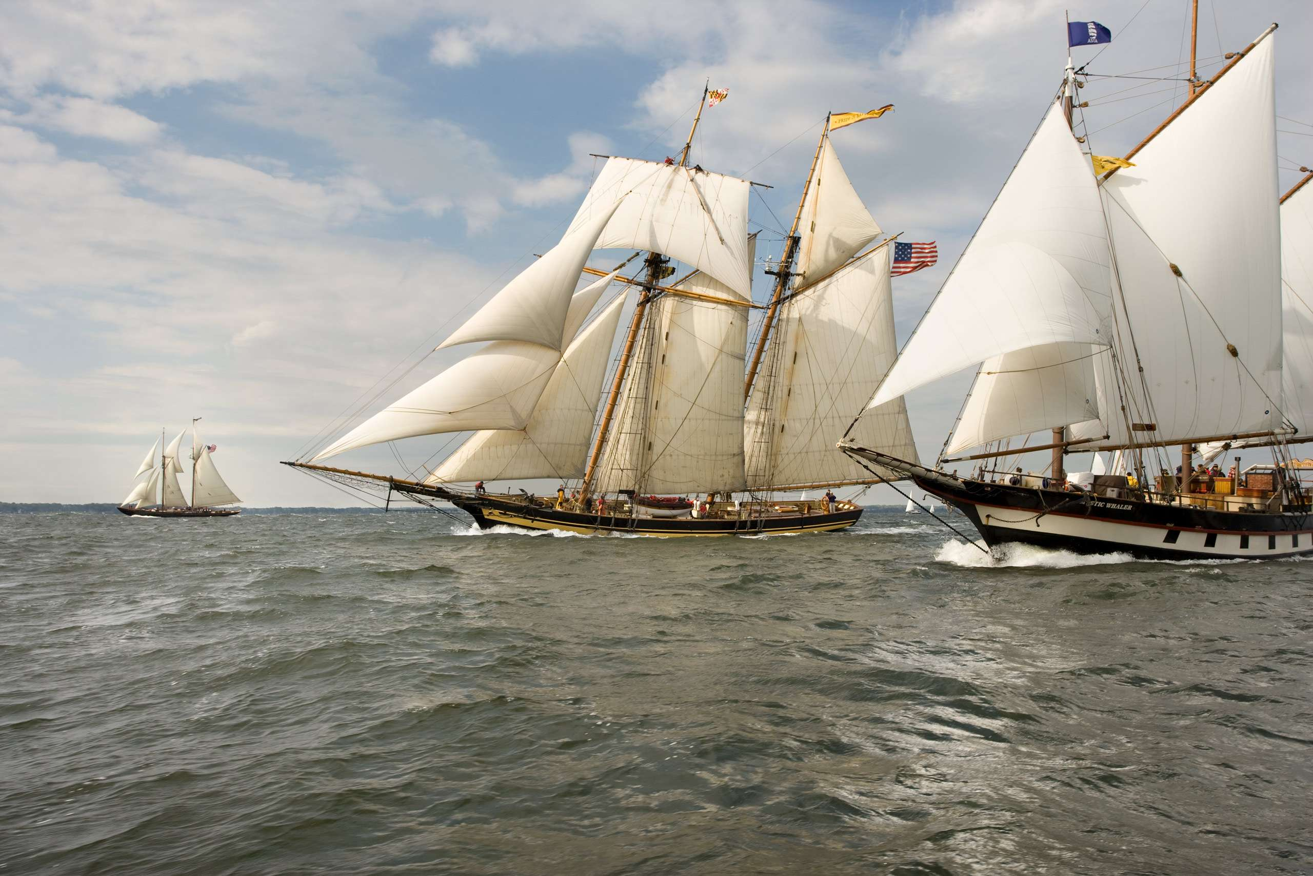 PORTFOLIO - Sailing - Tall Ships #9-PCG292