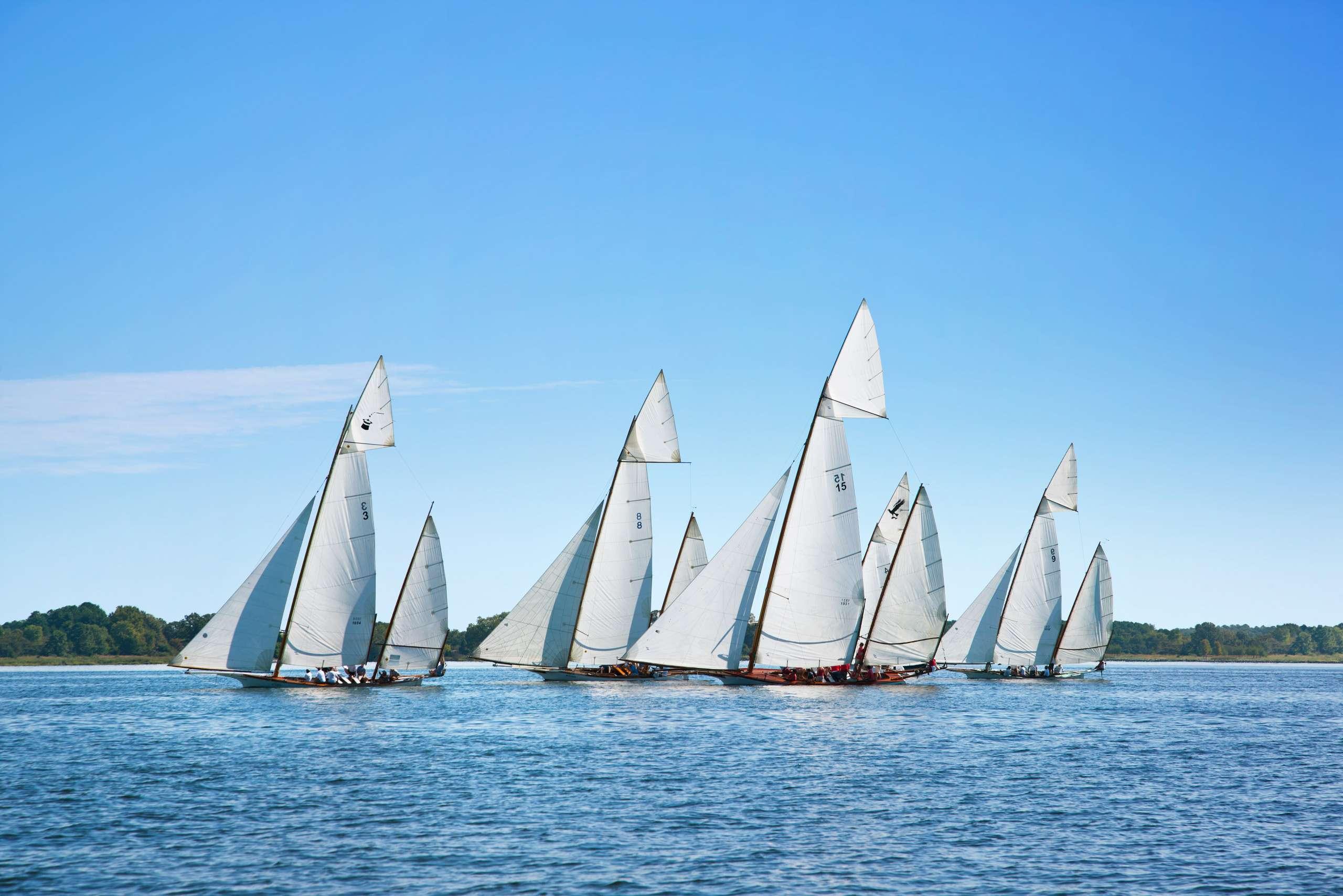 PORTFOLIO - Sailing - Log Canoes #4   PCG564
