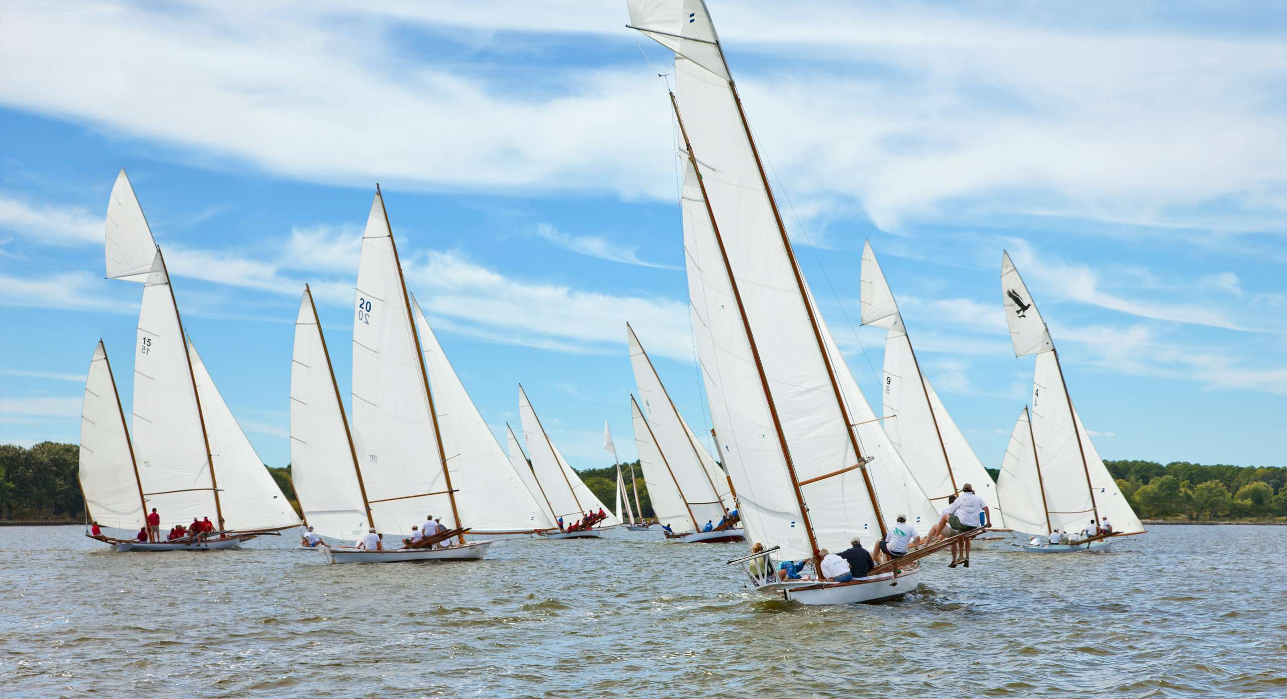 PORTFOLIO - Sailing - Log Canoes #23   PCG569