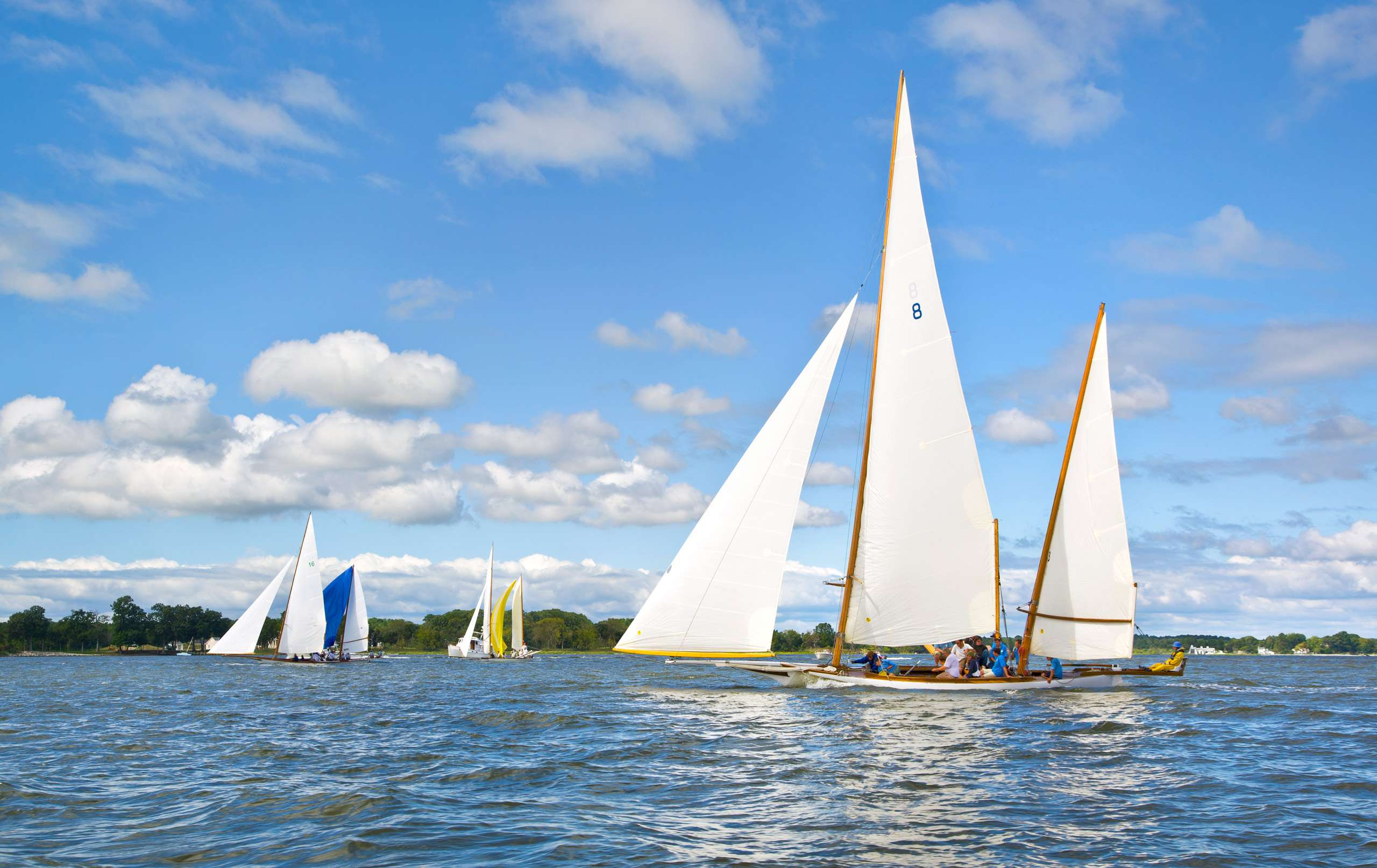 PORTFOLIO - Sailing - Log Canoes #15   PCG529