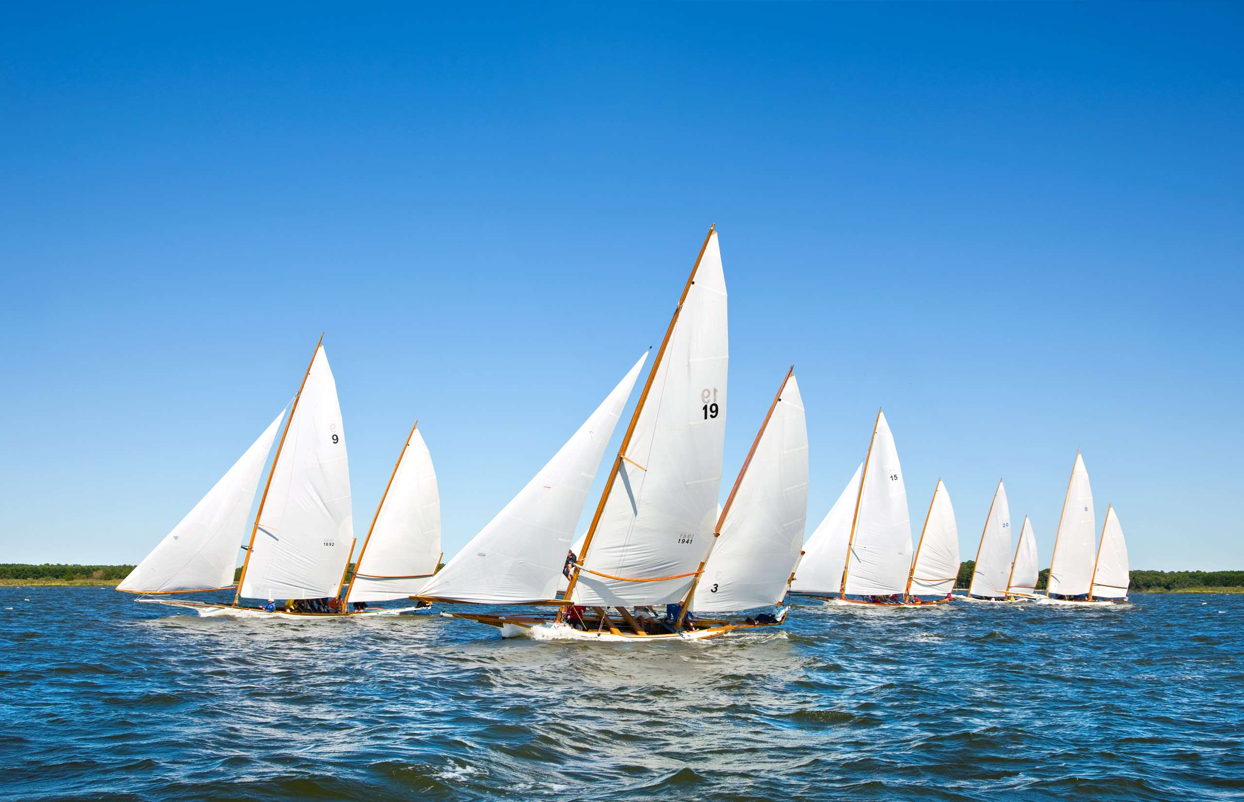 PORTFOLIO - Sailing - Log Canoes #8   PCG476