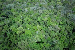 IguazuFalls_0817cc.jpg