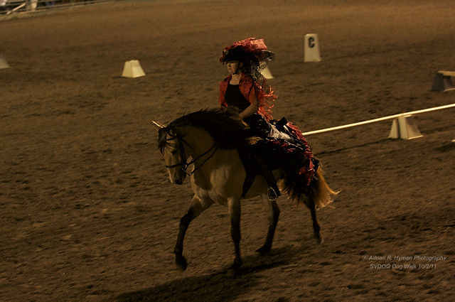 """Sonoma Chapter of the California Dressage Society """"Dressage in the Wine Country 2011"""""""