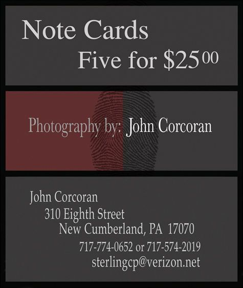 1Card_Prices_and_Contact_Information_