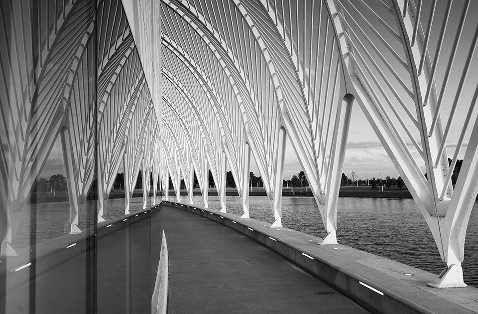 1florida_polytechnic_university_ist_building_exterior_daylight_promenade_mirror_bw_960.jpg