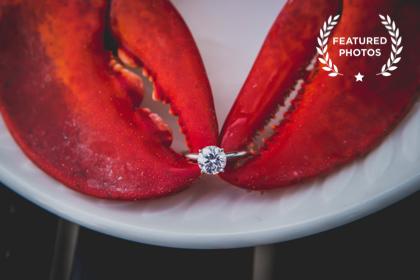 Wedding & Engagement Portfolio V