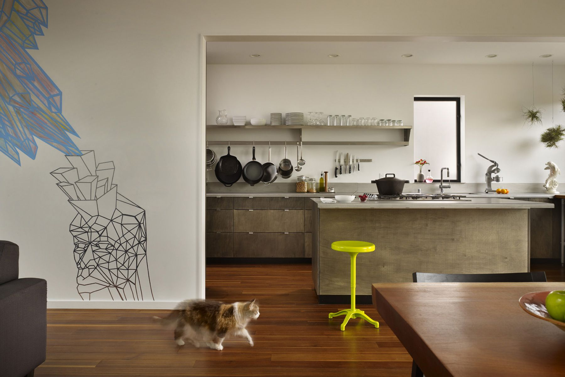 contemporary, kitchen, cat, island, mural