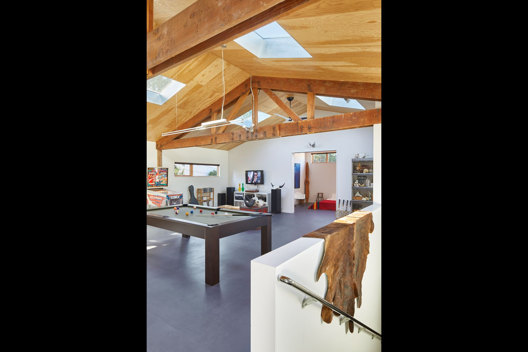 billiards, trusses, plywood, interior design, animal skin
