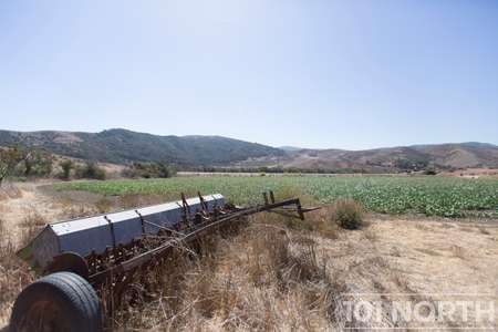 Ranch-Farm 08-81.jpg