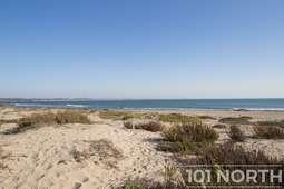 Beach 20 (104 of 38).jpg