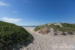 Beach 14-7.jpg