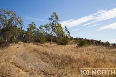 Ranch 15-13.jpg