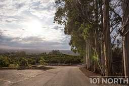 Road 07-2.jpg