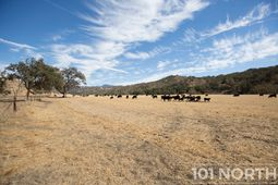 Ranch-Farm 01-69.jpg