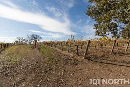 Winery 13-9.jpg