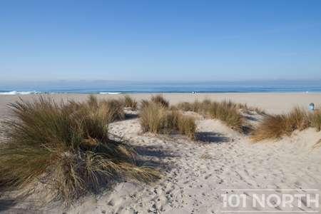 Beach 12-108.jpg