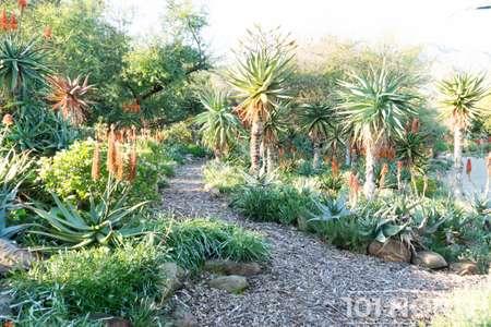 Garden 03-143.jpg