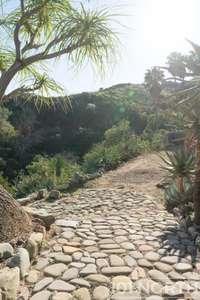 Garden 03-317.jpg