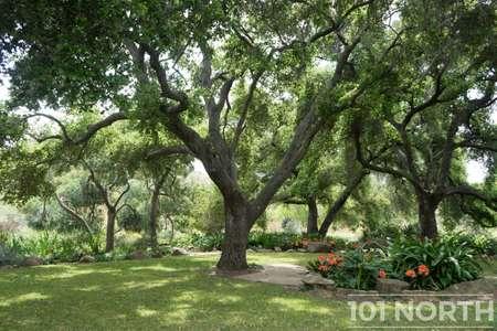 Garden 03-105.jpg