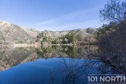 Pond 03-46.jpg