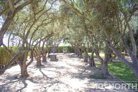 Ranch-Farm 06-61.jpg