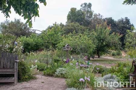 Garden 05-24.jpg