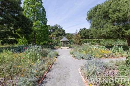 Garden 02-29.jpg
