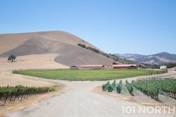 Winery 05-36.jpg