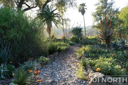 Garden 03-189.jpg