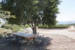 Winery 11-23.jpg