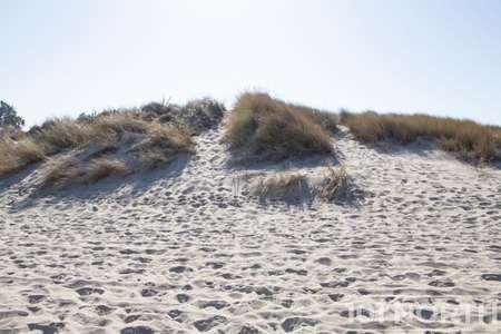 Beach 12-122.jpg