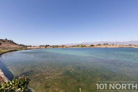 Pond 04-42.jpg