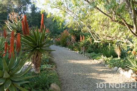 Garden 03-137.jpg