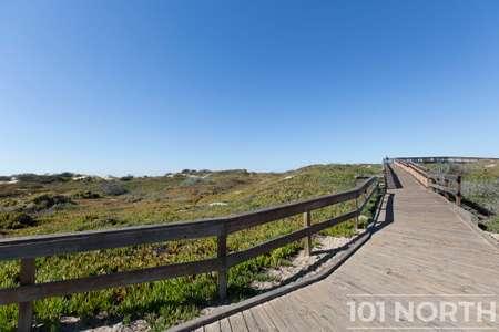 Beach 16-15.jpg