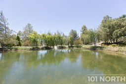Pond 02-12.jpg