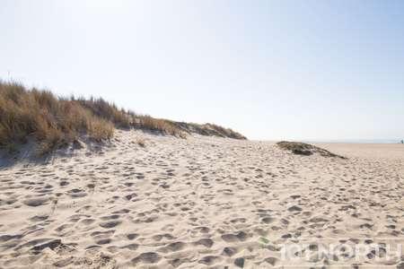Beach 12-125.jpg
