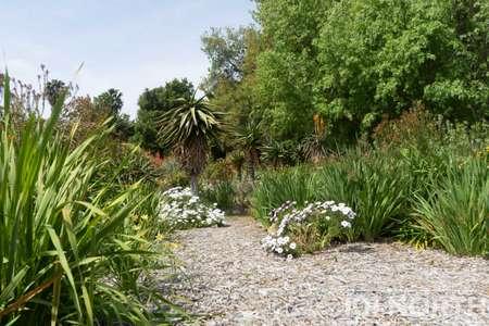 Garden 03-252.jpg