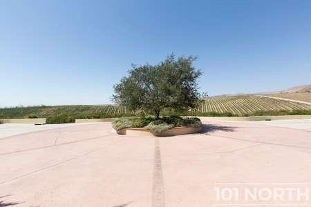 Winery 11-52.jpg