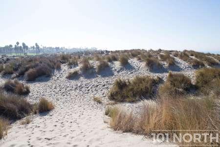Beach 12-111.jpg
