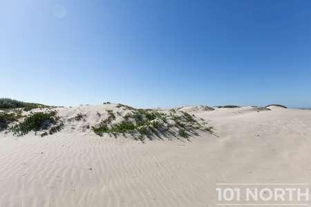 Beach 16-35.jpg