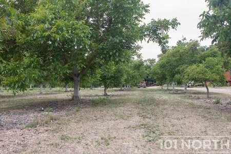 Garden 05-2.jpg