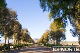 Road 16-301-5.jpg