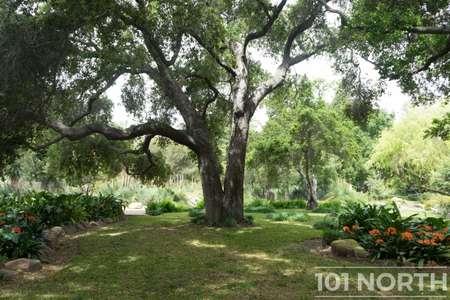 Garden 03-104.jpg