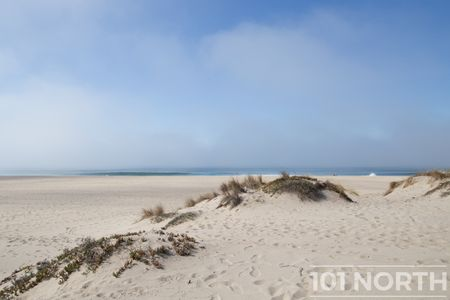 Beach 13-120.jpg