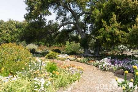 Garden 03-113.jpg